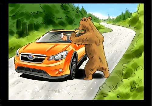 Subaru Storyboard